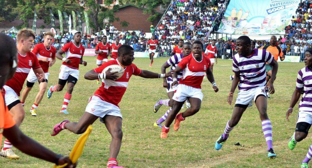 rugby -dairibord schools